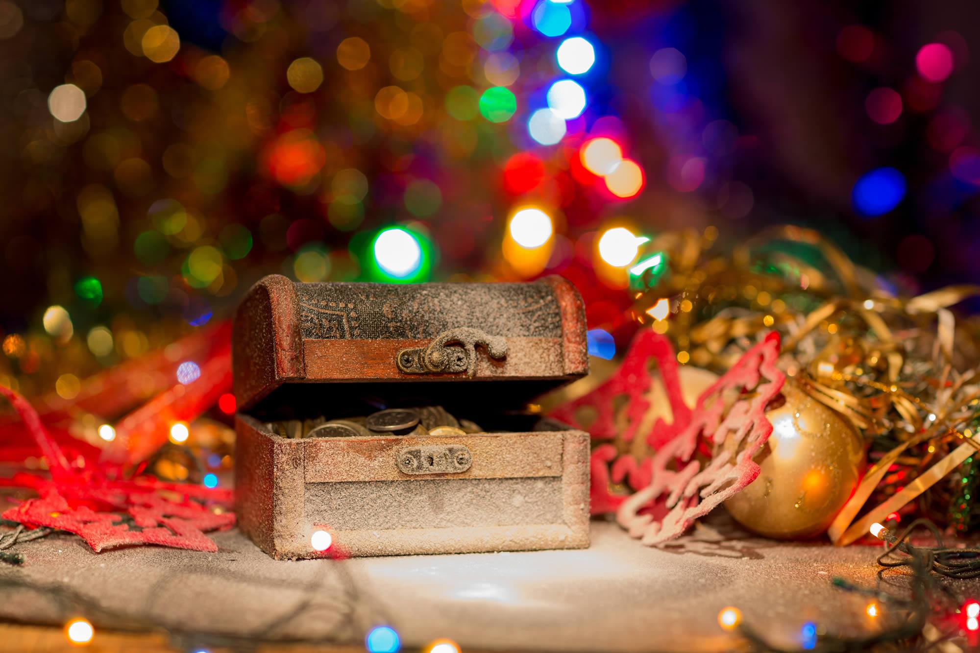 Christmas flowers-Christmas Treasure